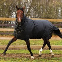 Trot Plus Heavy Turnout Rug