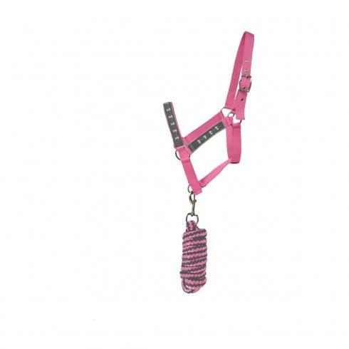 Hy Tartan Head Collar & Lead Rope