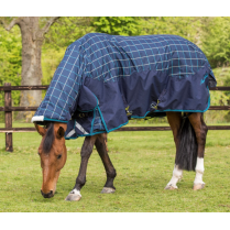 Heavyweight Combo Turnout Rug