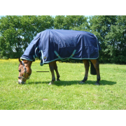 Lightweight Combo Turnout Rug