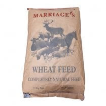 Marriage Wheat Feed (Middlings)