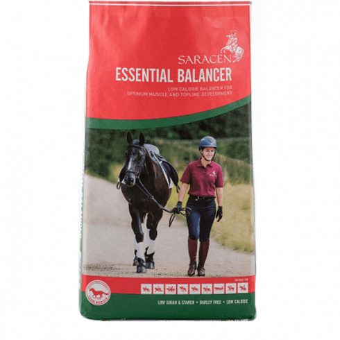Saracen Essential Balancer
