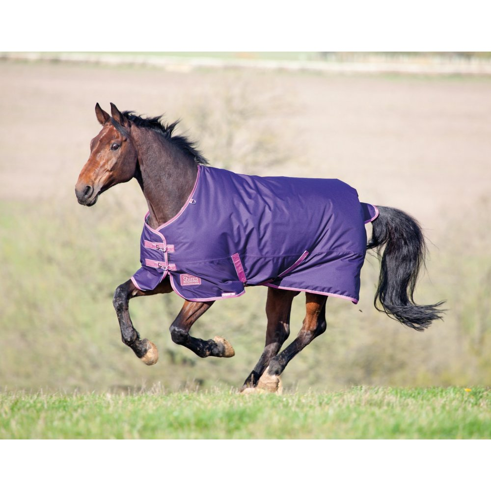 Shires Tempest Original 180 Turnout Rug