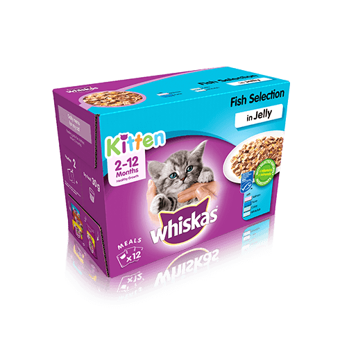 Whiskas Kitten Fish Selection in Jelly